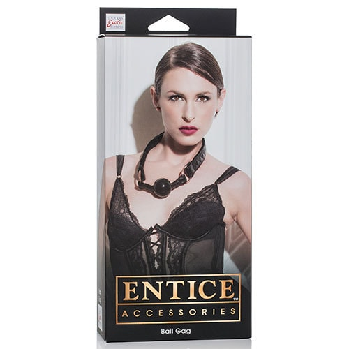 Entice Accessories Ball Gag Box