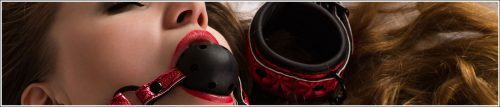 Ball Gags | Bondage Gags | Mouth Gags Sale Australia Wide